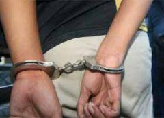 फरीदाबादः वाहनों की फर्जी एनओसी देने वाले 2 गिरफ्तार